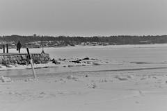 6Q3A5339 (www.ilkkajukarainen.fi) Tags: suomi suomi100 finland eu europa scandinavia nature luonto helsinki visit happy life sea meri talvi winter uunisaari kaivopuisto portrait