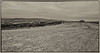Na Marusce (Radebe27) Tags: valassko wallachian czechrepublic ceskarepublika hdr sony nex6 panorama mraky clouds jaro