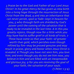 "1Peter1-3-9 (DonBantumPhotography.com) Tags: bible text ""gods holy word"" ""new covenant"" jesus life truth salvation forgiveness eternal faith god mercy grace joy peace perfection strength weakness victory ""donbantumcom"" ""donbantumphotographycom"" ""jesuswordcom"" ""httpwwwrevealedinchristcom"" ""eternal life"" ""everlasting love ""mini sermon"" gospel prayer thanksgiving christ messiah message ""heaven bound"" ""jesusnothing"""