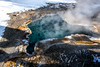 Yellowstone NP Trip - Day 3 (19) (tommaync) Tags: yellowstone yellowstonenationalpark yellowstonenp nationalpark national park wyoming winter nikon d7500 february 2018 snow nature boiling minerals bacteria hotspring spring bluestarspring bluestar blue steam water