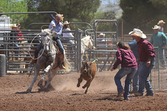 Queen Creek Junior Rodeo Assn. (twm1340) Tags: april 2018 cottonwood az verdevalley fair fairgrounds arena horse event youth cowgirl