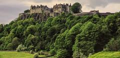 Stirling Castle (grahamd4) Tags: castle scotland landscape trees canon sx20 stirling