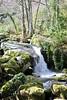 El Camino del Agua (Edu Coquer) Tags: waterfall water elcaminodelagua mogarraz lasbatuecas cascada naturaleza parquenatural agua