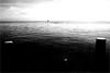 000510 (la_imagen) Tags: sw bw blackandwhite siyahbeyaz monochrome bodensee laimagen lakeconstanze lagodiconstanza lagodeconstanza friedrichshafen silence