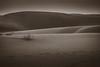 Silence (preze) Tags: thar tharr desert groseindischewüste थारमरुस्थल thaarmarusthal sandwüste samsanddunes dünen dune abend evening sanddune sand jaisalmer rajasthan indien india nordindien northindia greatindiandesert landschaft monochrom monochromatisch monochrome einfarbig