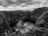 Sea Cave (Nikhil Ramnarine) Tags: newzealand southisland punakaiki blowhole seacave sea rocks clouds grass longexposure nikon d500 travel pancakerocks blackwhite blackwhitephotos
