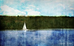 On The Lake (socalgal_64) Tags: carolynlandi water lake forest trees treeline clouds sky blue outdoors nature scenic picturesque landscape boat sailboat pennsylvania usa buckscounty spring woods texture reflections boating lakenocksamixon nocksamixonstatepark waterscape coth5