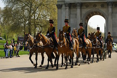 The Queen's 2018 Birthday gun salute - 13 (D.Ski) Tags: 2018 queens queen birthday gun salute royal park horse horses april westminster london nikon 2470mm 200500mm thekingstrooprha thekingstroop parade thequeen wellingtonarch hyde cornerhyde parkd700nikon d700