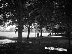 diary #2029: Previously On Norfolk Street