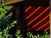 DSC03697 (bratispixl) Tags: fotosafari oberbayern germany bratispixl tele lichtwechsel schärfentiefe fokussierung bergwelt spot outdoor indoor architektur landschaft grat hügel wasser sonnenfotografie see flus tiere insekten nature nigth day spuren blumen wolken video chiemsee windspuren atemluft working