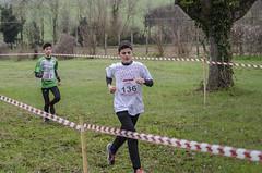 Simone Coppari