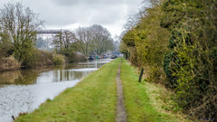 Brinklow Canal Walk 31st March 2018 (boddle (Steve Hart)) Tags: stevestevenhartcoventryunitedkingdomcanon5d4 brinklow canal walk 31st march 2018 steve hart boddle steven bruce wyke road wyken coventry united kingdon england great britain canon 5d mk4 6d 85mm f14 prime 100mm f28 macro wild wilds wildlife life nature natural bird birds flowers flower fungii fungus insect insects spiders butterfly moth butterflies moths creepy crawley winter spring summer autumn seasons sunset weather sun sky cloud clouds panoramic landscape strettonunderfosse unitedkingdom gb