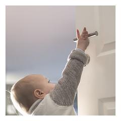 reaching. (David Kracht) Tags: handle door child hand small tiny little