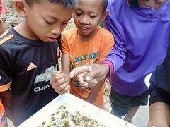 Students Examining Macroinvertebrates