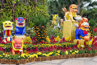 Gardens by the Bay, Singapore -7357