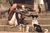 CHIEN DU GANGE (Jean d'Hugues) Tags: inde indien bénarès varasani gange fleuve sacré ghats marches chien