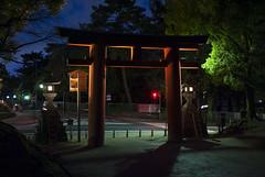 奈良公園、奈良、日本 — Nara Park, Nara, Japan (Tiphaine Rolland) Tags: japon japan nara kansai 日本 奈良 関西 春 spring printemps narapark 奈良公園 park parc 公園 tori torii gate porte shintō shinto 神道 鳥居 nuit night light lumière 夜 電気