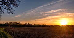 An April Evening (Peter Leigh50) Tags: sunshine sunlight sun sunset field farmland countryside skyscape sky landscape landschaft leicestershire footpath walking walk fujifilm fuji xt2