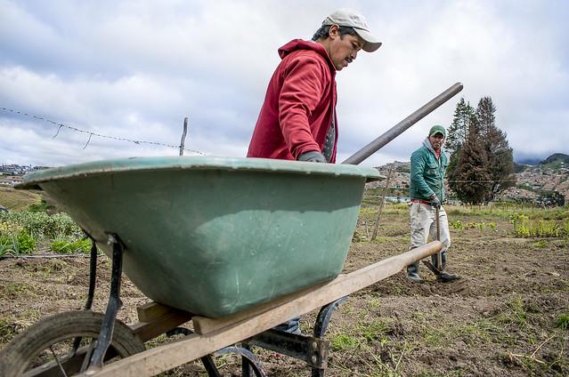 Trabajando la tierra en Nodo Usme