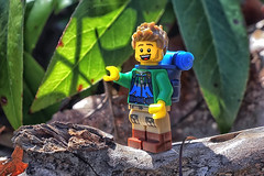 A Walk in the Woods (Gary Burke.) Tags: lego hiker legofigures minifigures toy legominifigures toys toyphotography legophotography legobricks forest woods hiking walking sony a6300 mirrorless sonya6300 landscape nature leaves newyork nyc newyorkcity park nycpark path alleypondpark bayside alleypond oaklandgardens queens ilovenewyork ny klingon65 gothamist garyburke tourism touristattraction nycdetails nyctravel city iloveny citylife ilovenyc cityliving outside outdoor walk fun macro