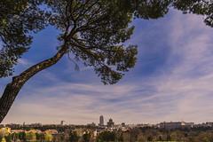 Madrid skyline from Casa de Campo (ninestad) Tags: