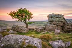 Emsworthy Rocks (Rich Walker75) Tags: dartmoor devon tor rocks rock tree trees landscape landscapes landscapephotography landmark landmarks countryside westcountry sunset cloud sky pink grey clouds england greatbritain canon eos80d eos efs1585mmisusm