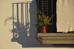 Sombras de Ibiza (Kasabox) Tags: sol sun luz light sombra ombra shadow ibiza eivissa natura nature planta maceta balcon