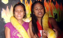 20180219_017 (Subic) Tags: philippines filipina hash hotzone snakes