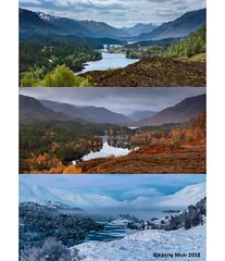 Glen Affric Seasons (Kenny Muir) Tags: glen affric glenaffric highlands scotland landscape seasons