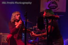 IMG_5428 (Niki Pretti Band Photography) Tags: band concertphotography liveband livemusic livemusicphotography music nikiprettiphotography scottyoder ivyroom canon canon5d canonphotos canonphotography