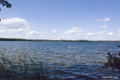 Шацький Національний Природний Парк Озеро Пісочне Берег InterNetri  Ukraine 162