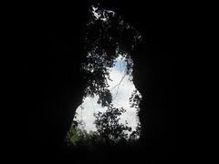 Guizhou China cave 平塘小竖洞 (黔中秘境) Tags: china guizhou asia mountains 中国 贵州 亚洲 山 大自然 大自然china 贵阳 cave 中国洞穴 贵州洞穴 洞穴 山洞 洞 cavem caves caving cccp speleo