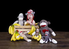 (Andrew d'Entremont) Tags: baby boy blonde sock monkey monkeys wooden crate banana bananas monkeying around