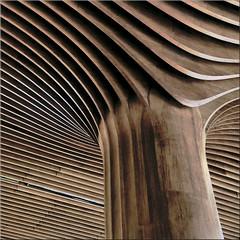 organic (Bernergieu) Tags: milano citylifeshoppingdistrict citylife tretorri wood holz architecture architektur detail lookingup struktur structure lines curves