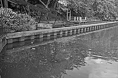 Water Slide Monochrome (brianarchie65) Tags: eastpark eastyorkshire kingstonuponhull cityofculture monochrome waterslide water lake ngc steps trees ducks litter rubbish lapollution blackandwhite blackandwhitephotos blackandwhitephoto blackandwhitephotography blackwhite123 unlimitedphotos flickrunofficial flickruk flickr flickrcentral ukflickr canoneos600d geotagged brianarchie65