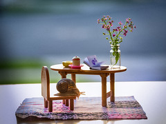 morning tea (auntneecey) Tags: flowers snail cute tabletop 365the2018edition 3652018 day143365 23may18