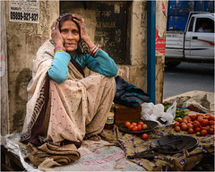 India-4238 (AndyG01) Tags: india kalka palaceonwheels street seller market lady indian