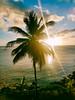 Choc Bay at St. James Club (laurenspies) Tags: grosisletquarter stlucia windwardislands caribbean chocbay caribbeansea atlanticocean lesserantilles westindies saintlucia choc castries lc corinth sunset palmtree