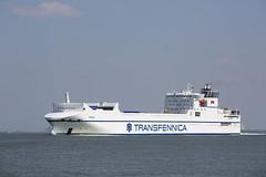 TRICA (angelo vlassenrood) Tags: ship vessel nederland netherlands photo shoot shot photoshot picture westerschelde boot schip canon angelo walsoorden cargo trica roro