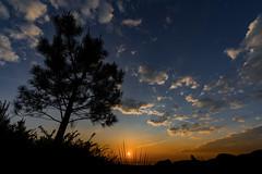 Mencer na Grela (Feans) Tags: sony a7r ii a7rii fe 1635 gm galiza galicia lampai teo grela alto pico