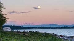 White Rock Moon (Sworldguy) Tags: whiterock fullmoon blaine sunset beach shoreline semiahmoobay canada britishcolumbia bc driftwood logs landscape sonya73 promenade mountains