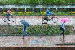 Rainy way home (glukorizon) Tags: 52weeksof2018 bicyclelane bicyclepath bicyclist coat cyclist fiets fietser fietspad footpath jas nat pad paraplu path pedestrian photographicimpressionism plas puddle rain raincoat regen regenjas regenplas umbrella voetganger voetpad wandelpad wet