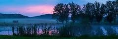 A Pond at Evening - Saxonia, Germany (dejott1708) Tags: pond evening sunset saxonia germany landscape panorama mist fog water trees