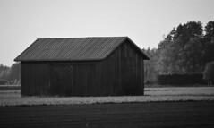 IMG_0075 (www.ilkkajukarainen.fi) Tags: pohjanmaa blackandwhite monochrome mustavalkoinen visit travel traveling happylife lato barn wood puu bulding rakennus heinä suoja