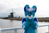 DSC_4408 (Noodlesfur) Tags: fursuit fursuiter fursuiting kinderdijk husky blue blooberry kaiser wildmills windmill dutch netherlands holland