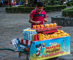 2018 - Mexico City - Coyoacan Ricos Mangos Man (Ted's photos - For Me & You) Tags: 2018 cdmx coyoacan cropped mexico mexicocity nikon nikond750 nikonfx tedmcgrath tedsphotos tedsphotosmexico vignetting ricos ricosmangos mango fruit cart food foodcart street streetscene boy male working cups