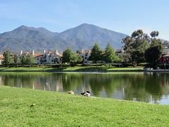 A walk around the lake (Bennilover) Tags: walking benni dogs dog ranchosantamargarita ranchosantamargaritalake saddlebackmountain california lakes