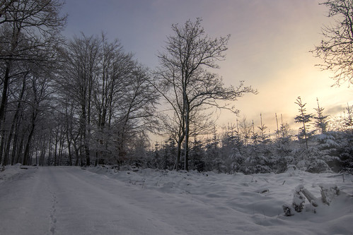 """Winter in Skåne • <a style=""""font-size:0.8em;"""" href=""""http://www.flickr.com/photos/150102734@N08/27164078148/"""" target=""""_blank"""">View on Flickr</a>"""