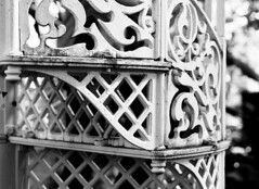 Botanisk Have - støbejernstrappe (holtelars) Tags: pentax 645 pentax645 645n 6x45 smcpentaxa 120mm f40 macro 120 film 120film foma fomapan fomapan100 fomapan100professional 100iso mediumformat analog analogue blackandwhite classicblackwhite bw monochrome filmforever ishootfilm filmphotography xtol homeprocessing larsholte denmark danmark flower closeup botanicalgarden botaniskhave copenhagen københavn