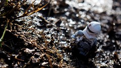 In the Marshes (RagingPhotography) Tags: lego star wars republic clonetrooper clone trooper outside outdoors outdoor marsh marshes swamp water wet bokeh damp dirty dirt filth filthy soil bright light shine shining reflect reflecting reflection walking walk blaster weapon toy toys plastic minifigure minifig figure nature pretty brown white cool amazing ragingphotography